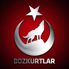 00573_Bozgurt
